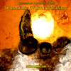 Shamanic Crystal Healing - Meditation Music