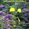 Thank You - Happy Relaxing Wellness Music